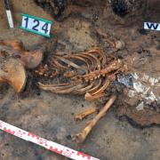 Szczątki ludzkie ofiary tragedii z 1354 r. w piwnicy jednego z domostw przysypane pogorzeliskiem 2
